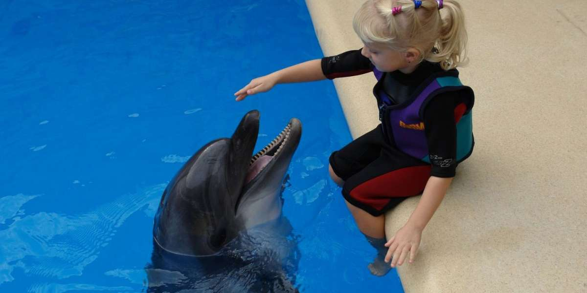 Dolphin therapy on the website therapynemo.com , photo №3